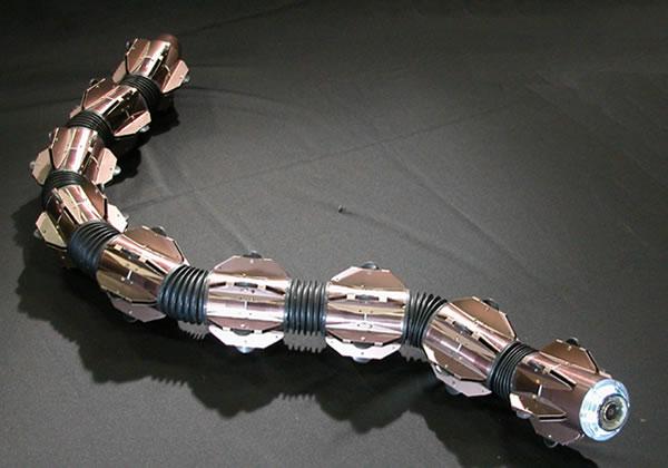 acm-r5-robot-snake